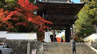 宝福寺 紅葉 雪舟ゆかりの地 岡山県 総社市 2016.11.16
