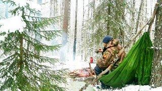 Тайга в начале зимы прерванный рассказ