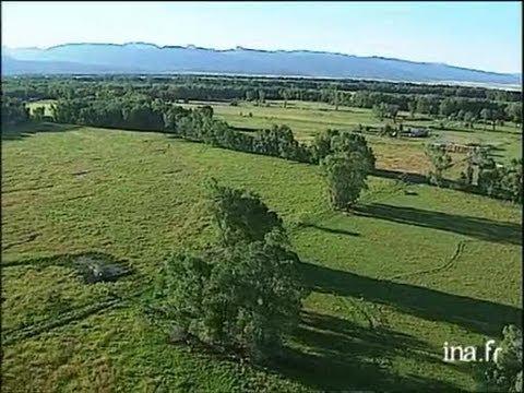Etats Unis : Plaines en Idaho et Grand Teton
