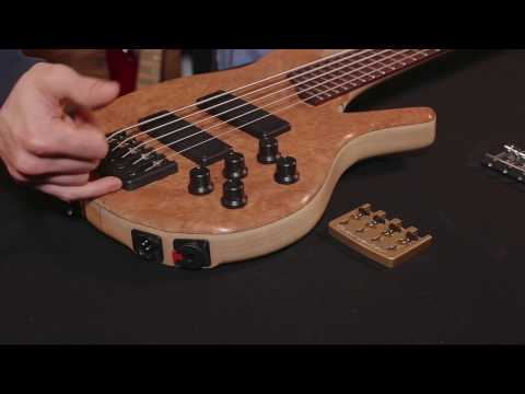 """How to Adjust Your Bridge"" - Understanding Your Bass with Chris May /// Scott's Bass Lessons"