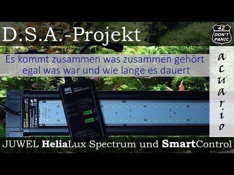 JUWEL HeliaLux Spectrum und SmartControl (Beste LED Aquarien Beleuchtung?) | D.S.A.-Projekt