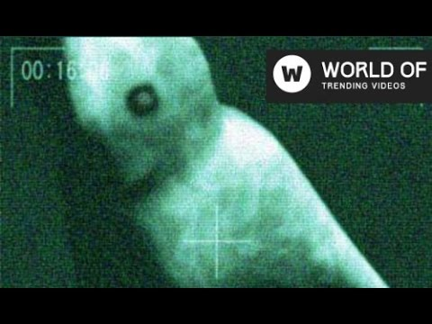 Strange Creatures Under The Sea Mysterious 2016 Latest Video You Won't Believe!