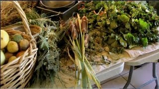 The Wild Plant Cafe- Gourmet Weeds