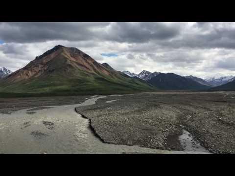 Scenes from our Alaska Trip, 2016 Denali National Park