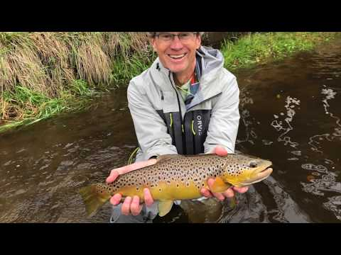 Big Wild Trout! Fly Fishing With Antietam Outfitters