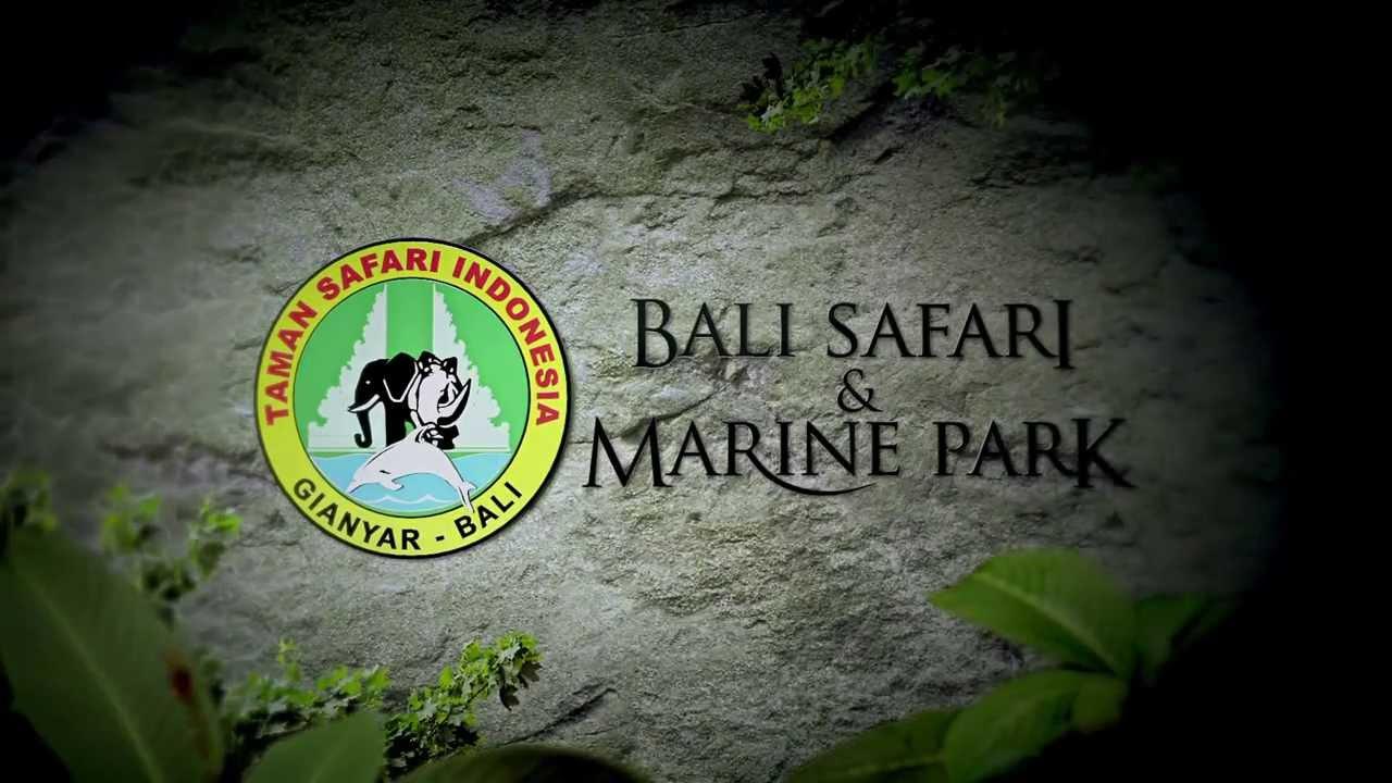 Night Safari Bali Safari And Marine Park
