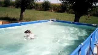 Atreiu di Casa Toso Swimming