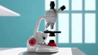 Into the Microscope, A Short 3D Animation