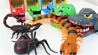 Tayo the little bus & Giant Croc Toy Monster Insect, spider, scorpion funny story!