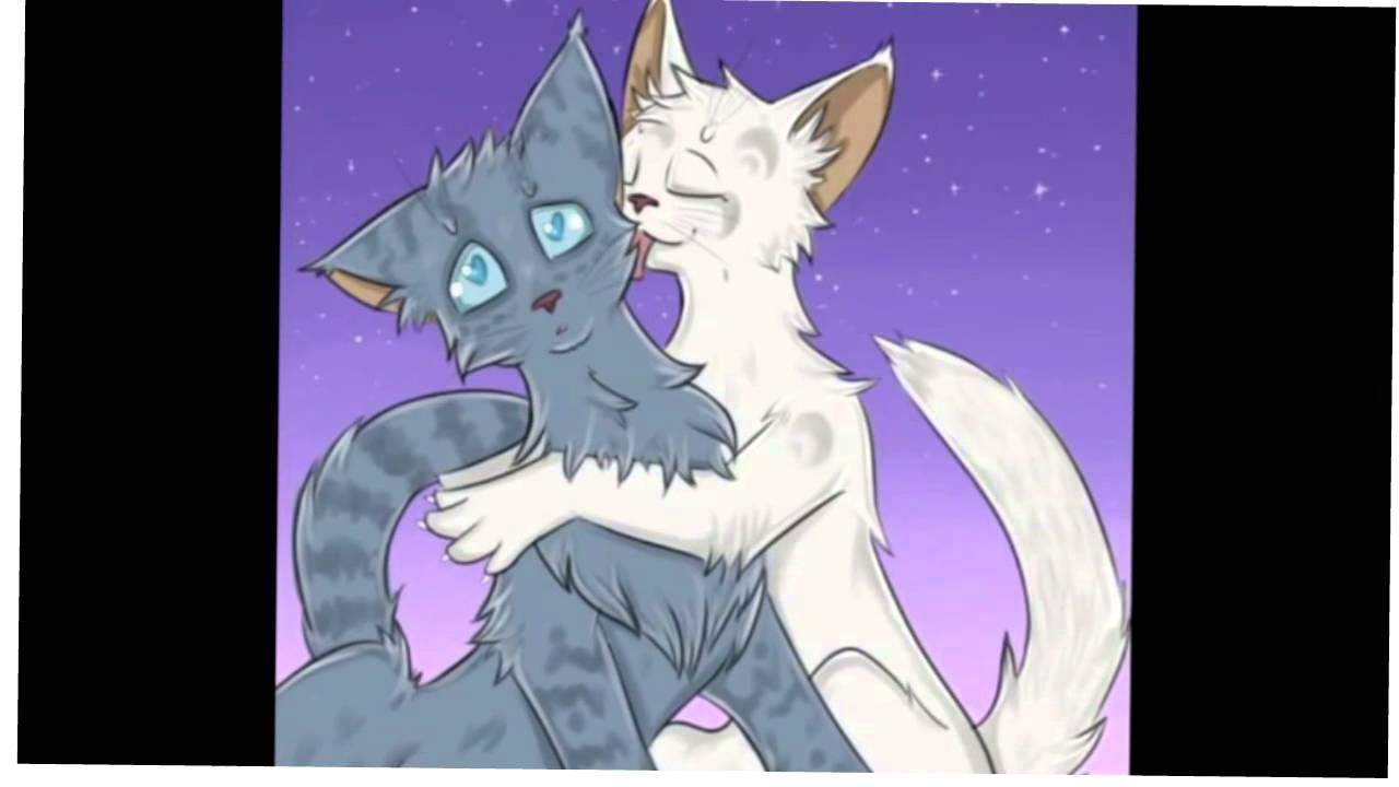 Половинка луны картинки коты воители