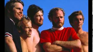 Fun Fun Fun - The Beach Boys