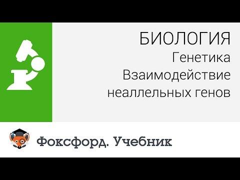 Издательство Академкнига/Учебник