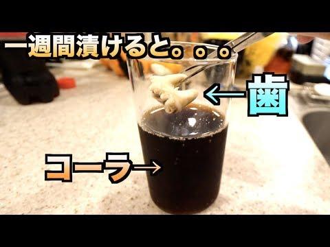 【実験】コーラがどれだけ歯に悪影響を及ぼすかわかる動画