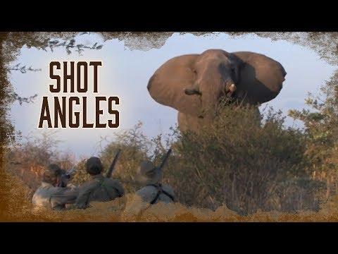 Shot Angles on Elephants | 7