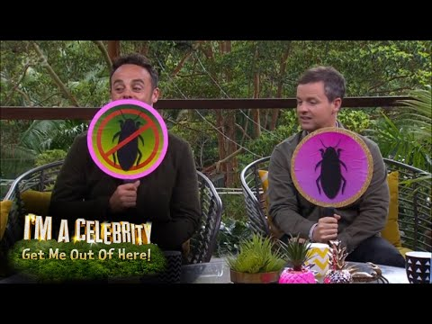 Ant and Dec Play Critter or No Critter | I'm A Celebrity... Extra Camp