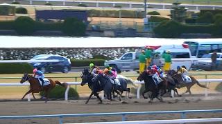 3階スタンドで撮るとウルサイ。サンタエヴィータが勝利。京都競馬場、現地映像