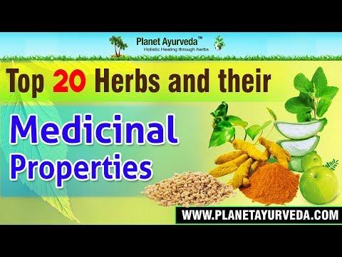 Top 20 Herbs & their Medicinal Properties - Health Benefits
