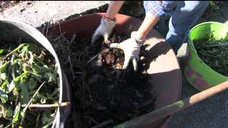 Gardening with Tim: Composting Your Summer Harvest