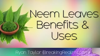 Neem Leaves: Health Benefits and Uses