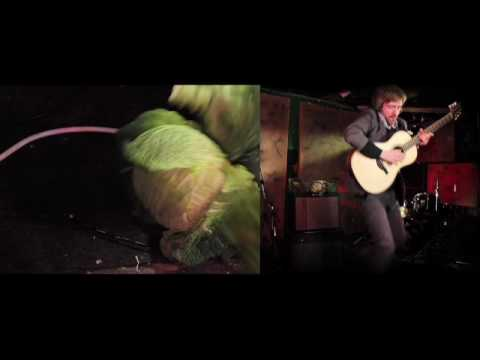 David Thomas Broughton 'Nature' OFFICIAL VIDEO