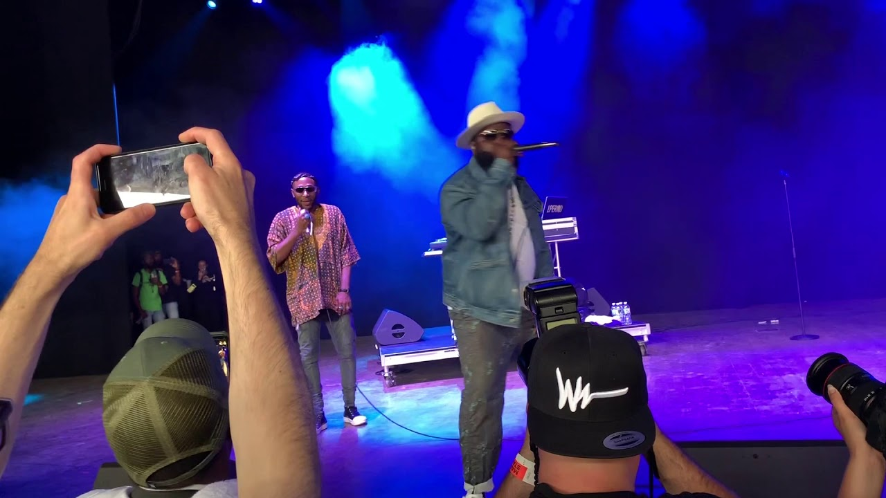 Black Thought and J  Period's Live Mixtape - Roots Picnic 2019 Edition