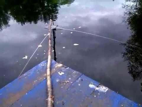 подкормка для ловли окуня