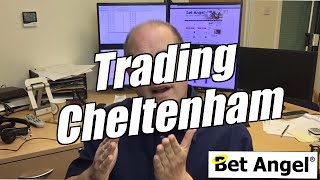 Betfair trading  - Peter Webb on trading Cheltenham