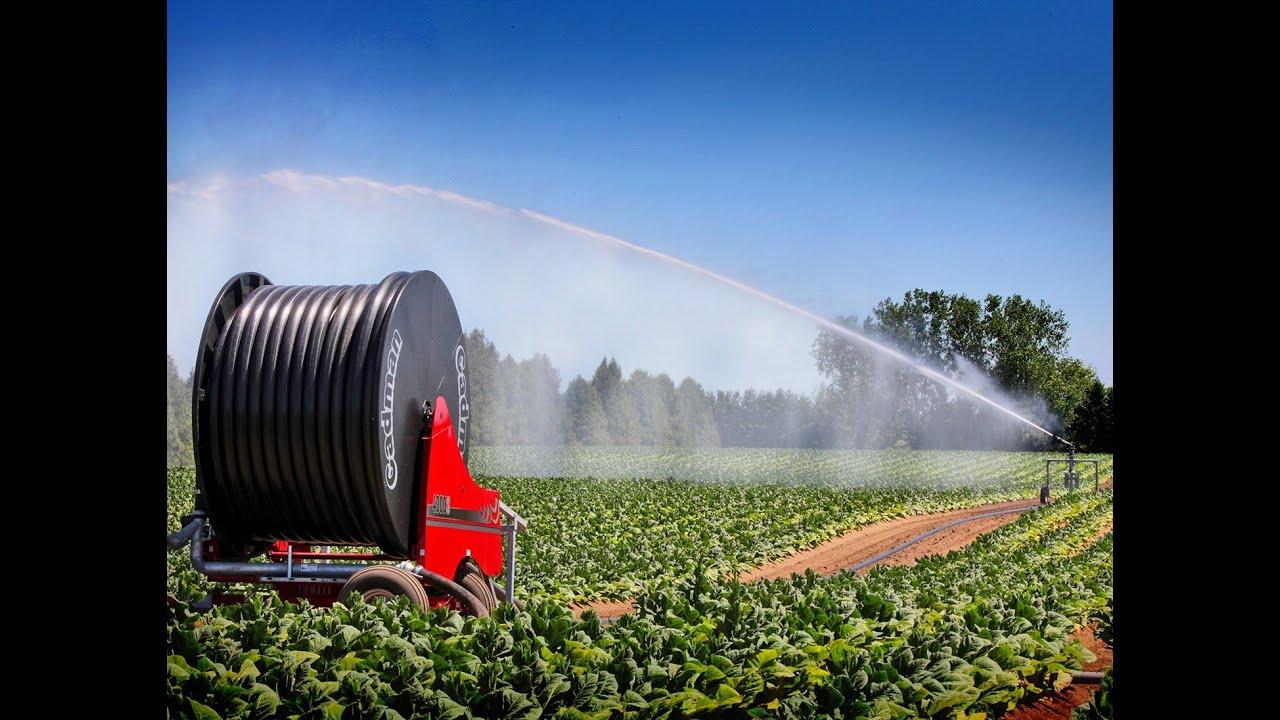 cadman irrigation systems with gun cart - Irrigation Systems