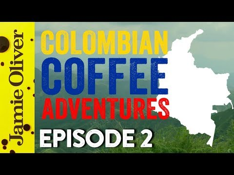 Coffee Hunters Colombia | Episode 2 | John Quilter AKA Food Busker