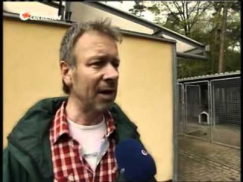 Download Scheckübergabe Germanys First Dog