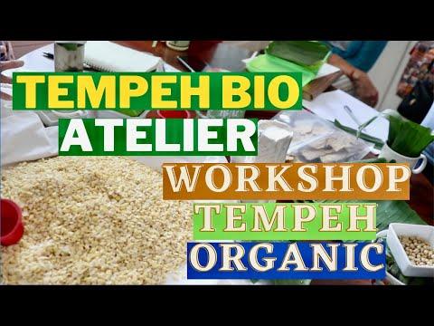 Tempeh Bio Atelier en Suisse : Organic Tempeh Workshop in Geneva