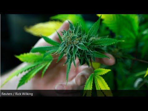The DEA's Response To Marijuana Legalization
