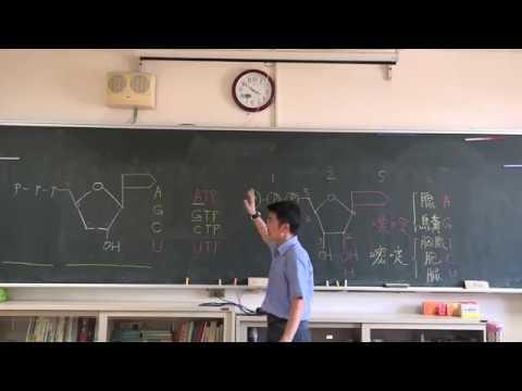 【潘彥宏老師】基礎生物(上) 03 | 第一章生命的特性   第二節細胞的構造