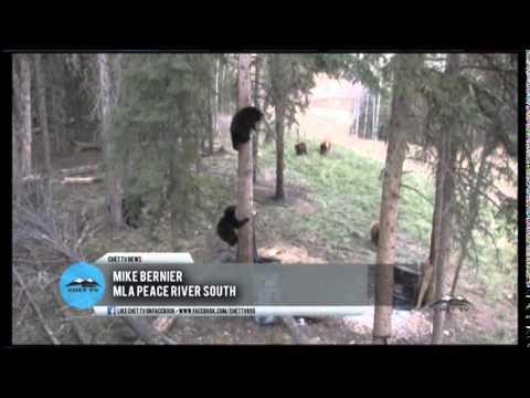 New Hunting Regulations In B.C. - CHET TV Report