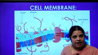 I PUC | Biology | Cell - The Unit of Life -03