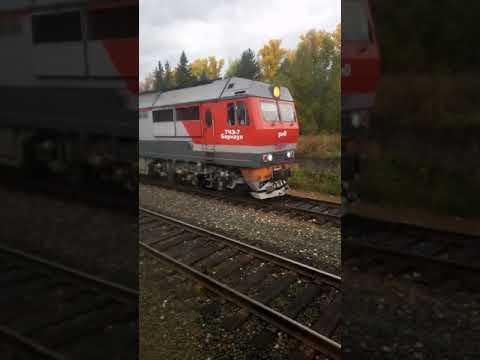 Поезд бийск барнаул калина красная отправление со станции гордеева.