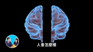 裂腦實驗證明我們大腦中可能還有另一個人 | 老高與小茉 Mr & Mrs Gao