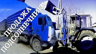 Погрузка и Продажа подсолнечника.  МТЗ-892, КУН, КАМАЗ(, 2016-04-07T09:00:01.000Z)