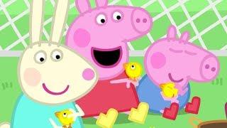 Peppa Pig Português Brasil | ❤️Ajudar ao próximo 💜Dia das Crianças | HD | Desenhos Animados