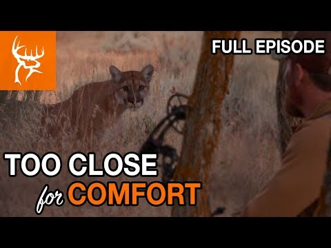 MOUNTAIN LION AT 7 YARDS!! | UTAH GIMME 2  | Buck Commander | Full Episode