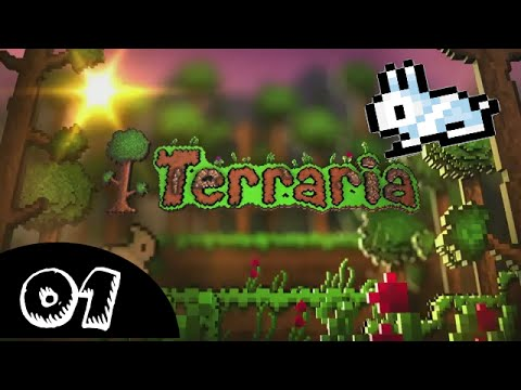 #1 Terraria - The Beginning [RAFF]