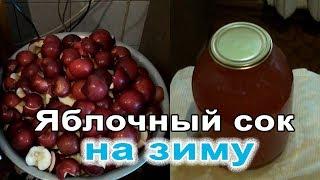 Как приготовить яблочный сок на зиму. Сок из соковыжималки. Сделай сам.