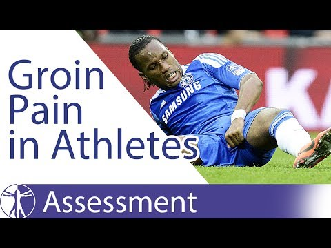 Groin Pain Classification in Athletes | 2016 Doha Agreement
