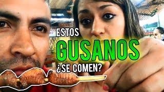 LAS MEJORES HUECAS EN EL #TENA - ECUADOR  La guayusa  energizante y el maito de tilapia 🐛