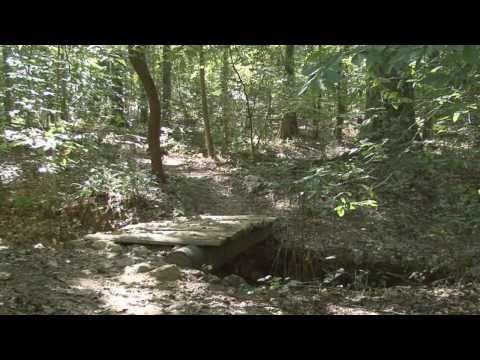 Mount Tabor Park - Mountain Bike Trails.   Dallas, Ga.  By Dashboard Adventures Ltd.