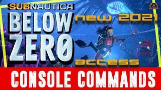 New Method    Access the Subnautica Below Zero Console