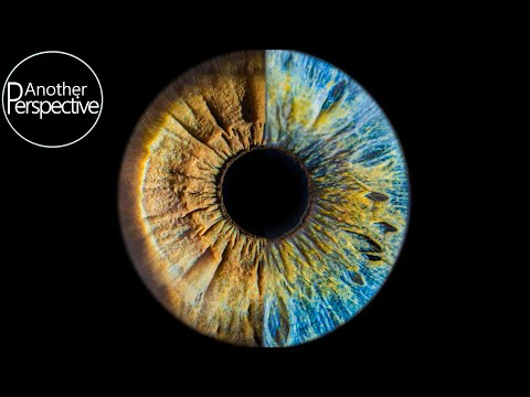 Eye Photography - How To Take A Sharp Image Of Your Iris