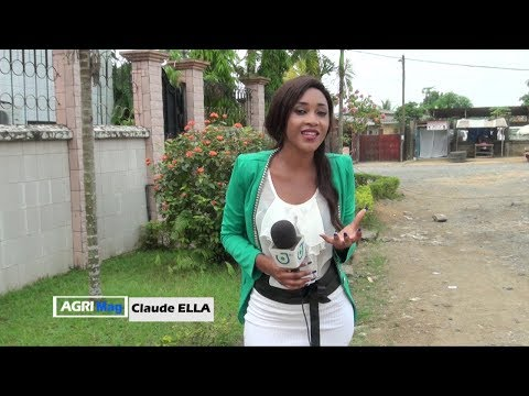 AGRI-MAG - (L'ÉLEVAGE PORCIN au CAMEROUN) - Jeudi 08 Février 2018 - Présentation : Claude ELLA