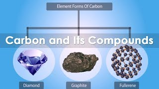 CBSE NCERT Notes Class 10 Chemistry Nature of bonding in Carbon