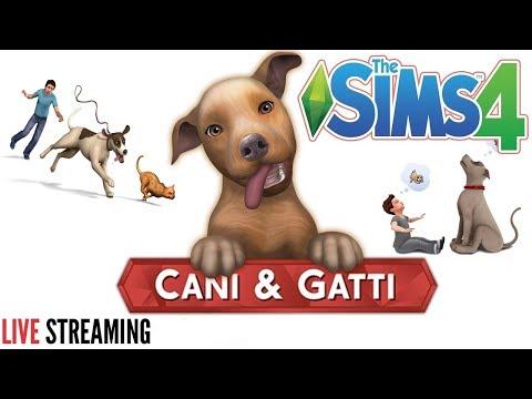 Creo i vostri animali the sims 4 cani e gatti live for Youtube cani e gatti